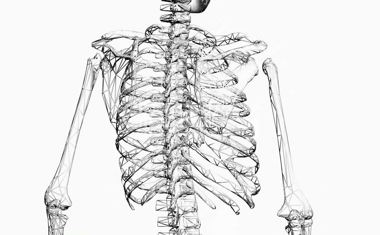 EL5-mikrostruktura-kosti–vazhna-li-ona
