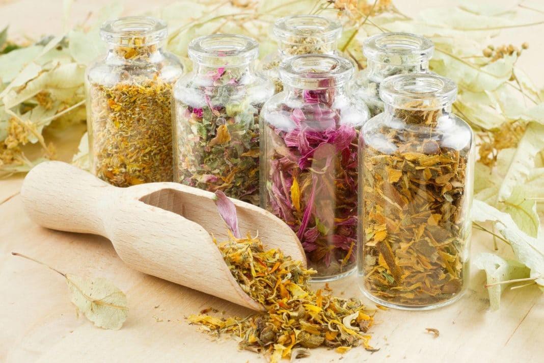 Лечение остеопороза народными средствами