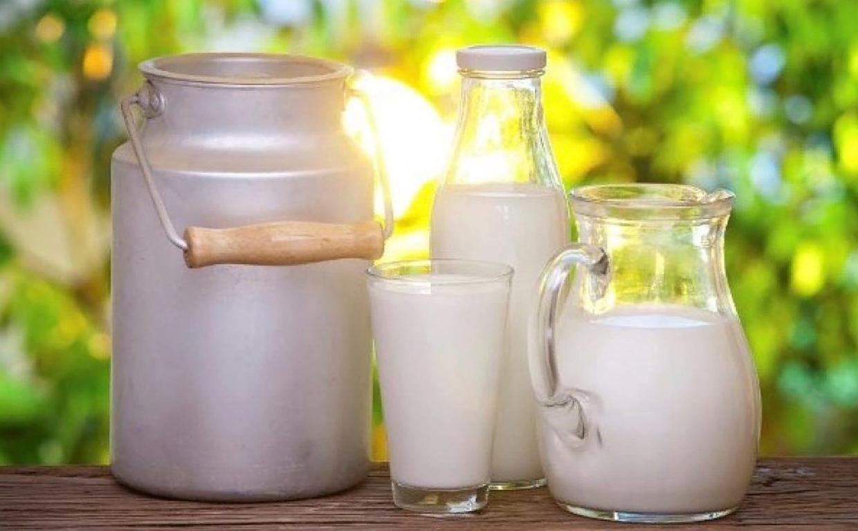 Вредно ли молоко – разные мнения о популярном продукте